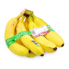 Bali Sweet Banana
