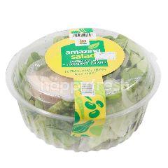 Amazing Salad Aneka Selada