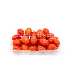 CAMERON GARDEN Organic Red Cherry Tomato