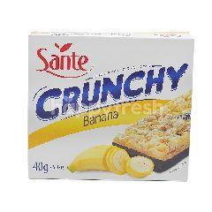Sante Crunchy Banana
