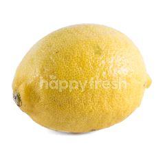 Australian Lemon