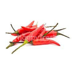 Thai Bird Eye Red Chilli