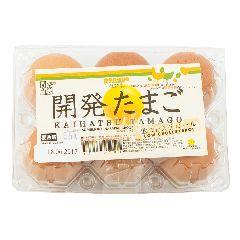 Kaihatsu Tamago Telur Ayam Rendah Kolesterol