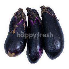 Japanese Nasubi Eggplant