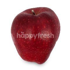 USA Big Red Apple