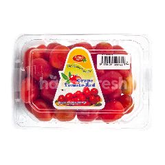 Parung Farm Tomat Anggur Merah