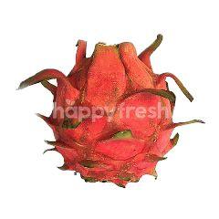 UM Local Red Dragonfruit