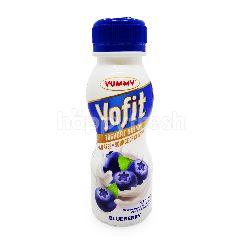 Yummy Yofit Yogurt Probiotik Rasa Bluberi