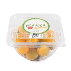 Highland Tomat Ceri Kuning