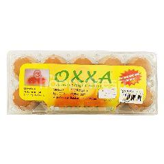 Farming Jaya Oxxa Telur Ayam Putih 2 Ring