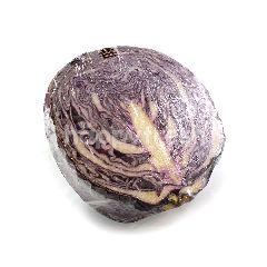 Red Round Cabbage