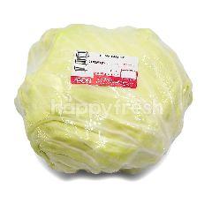 Round Cabbage (Kubis Bulat)
