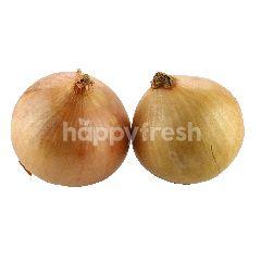 Eat Fresh Yellow Onion