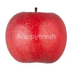 แอปเปิ้ลแดง